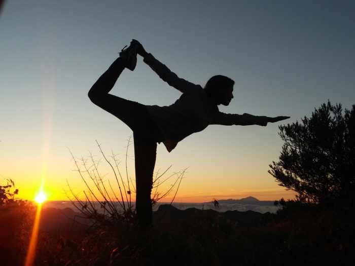 Ashtanga Yoga is the type of yoga which was created and established by a master named K. Pattabhi Jois